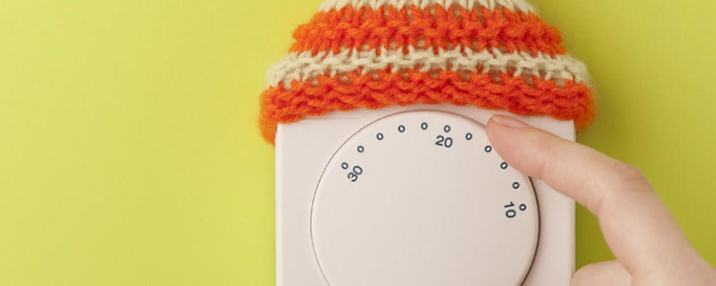 Thermostat with Wooly Hat